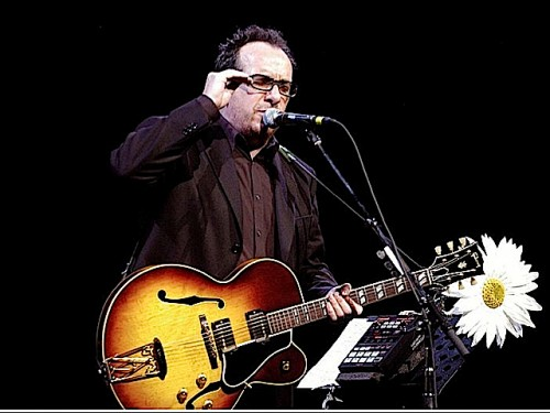 Elvis Costello (Photo: Victor Diaz Lamich)